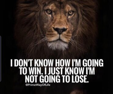 THE LION MINDSET